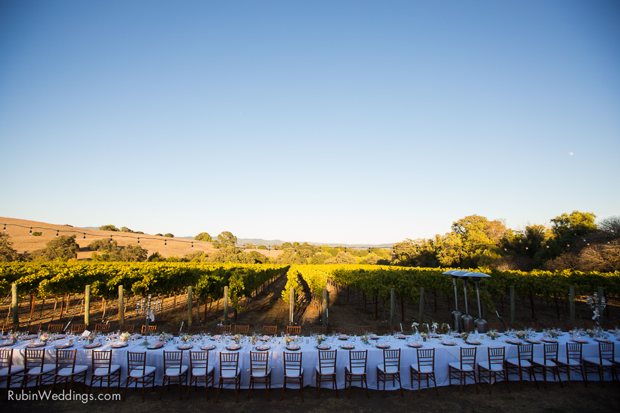 Sonoma Wedding Photographer at Durell Vineyard_0001-13