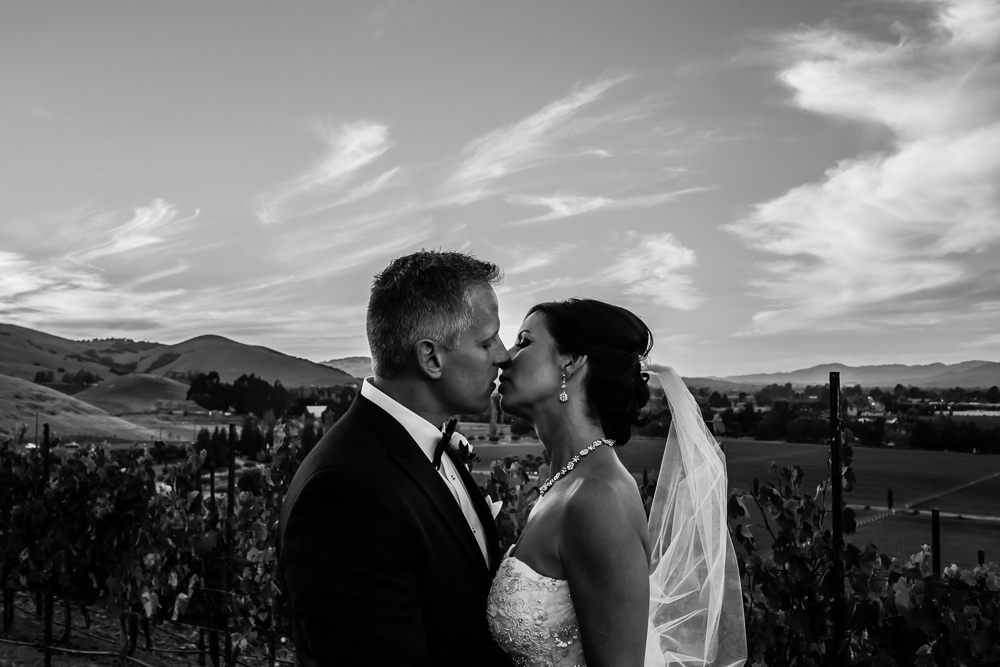 Destination Sonoma Wedding at Viansa Winery By Alexander Rubin Photography_0001