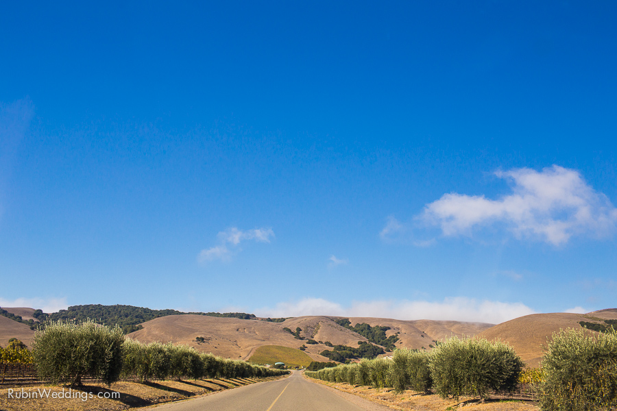 Sonoma and Napa Elopement Photographer at Gloria Ferrer Winery Wedding By Rubin Photography_0002