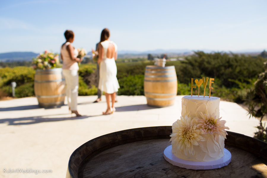 Sonoma and Napa Elopement Photographer at Gloria Ferrer Winery Wedding By Rubin Photography_0008
