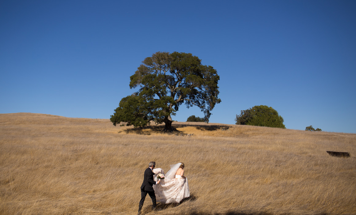 Durrel Vineyard Sonoma Wedding Photographer0028