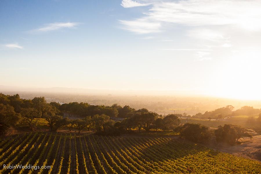 Sonoma Wedding Photographer at Paradise Ridge winery by Rubin Photography_0023