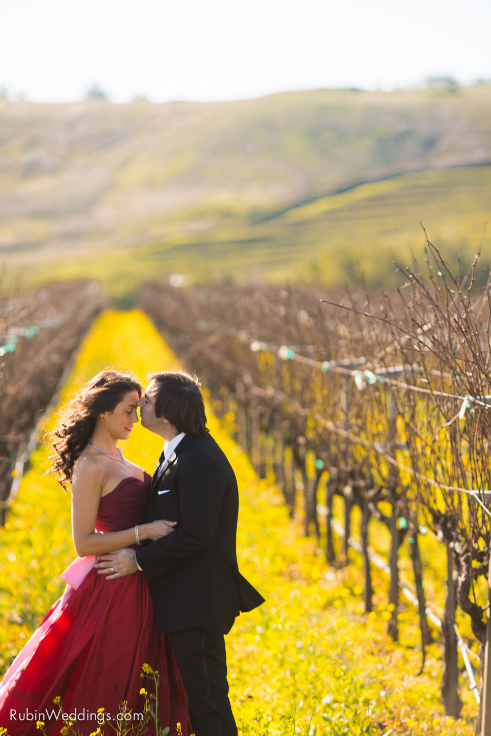 Destination Elopement Wedding in Napa By Alexander Rubin Photography_0006