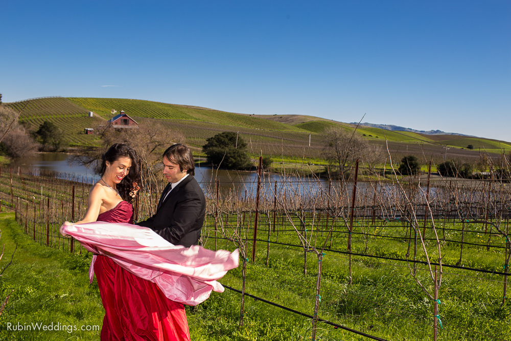 Destination Elopement Wedding in Napa By Alexander Rubin Photography_0010