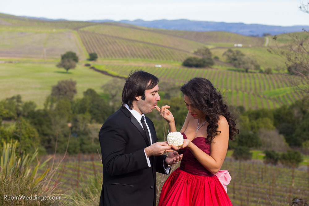Destination Elopement Wedding in Napa By Alexander Rubin Photography_0028