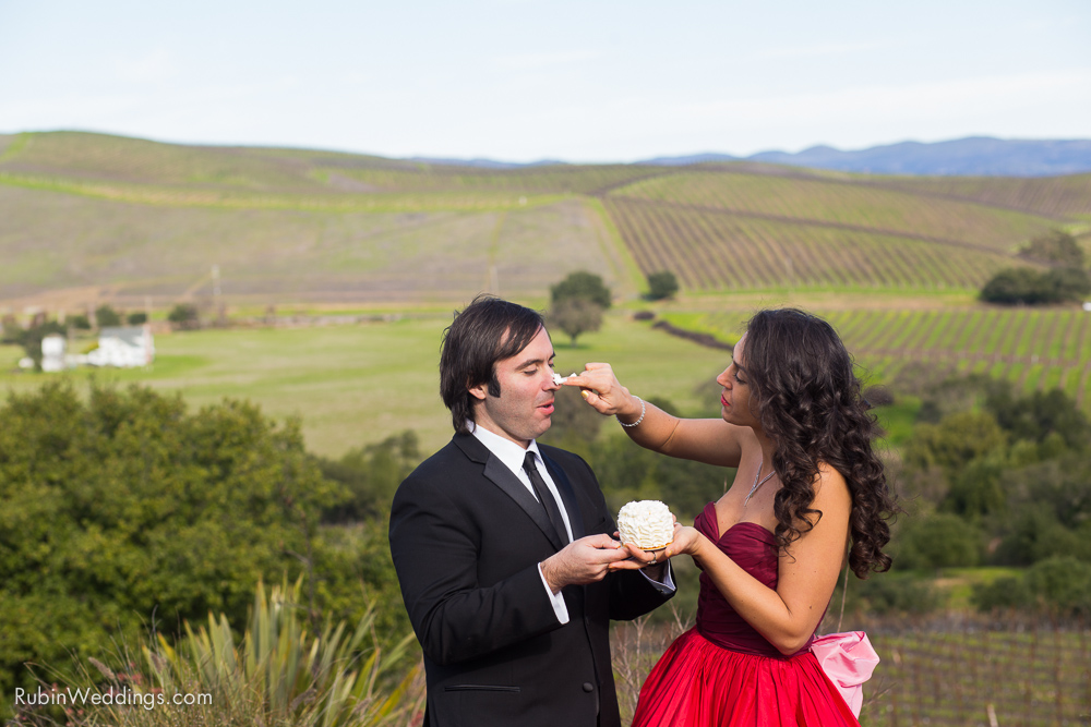 Destination Elopement Wedding in Napa By Alexander Rubin Photography_0029