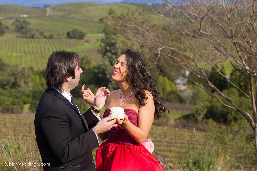 Destination Elopement Wedding in Napa By Alexander Rubin Photography_0031