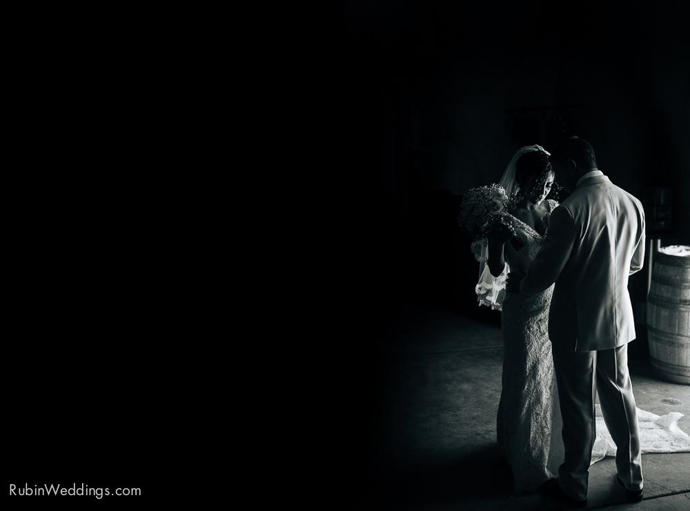 Blue Victorian Wedding at Vezer Family Vineyards By Alexander Rubin Photography (17)