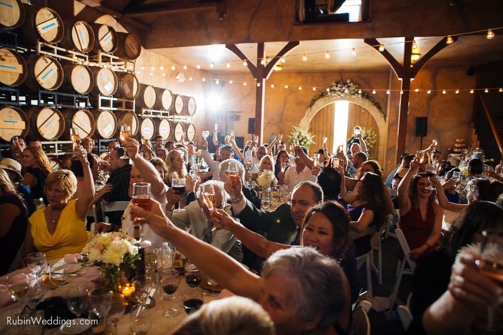 Blue Victorian Wedding at Vezer Family Vineyards By Alexander Rubin Photography (30)