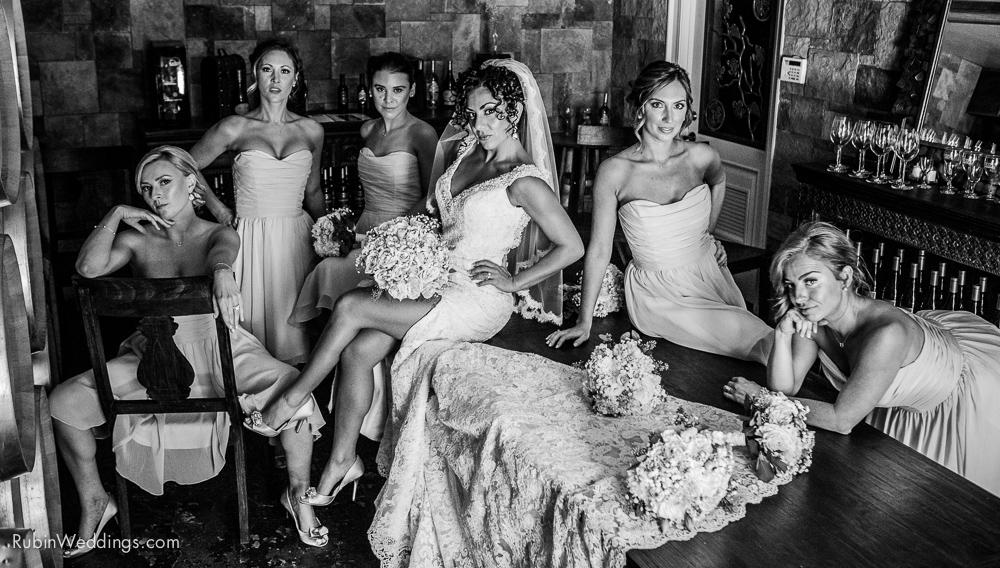 Blue Victorian Wedding at Vezer Family Vineyards By Alexander Rubin Photography (4)