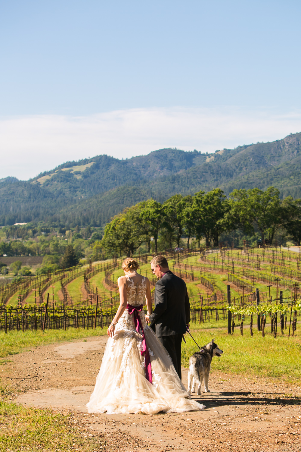 Dog at Wedding Photo Kunde Winery0198