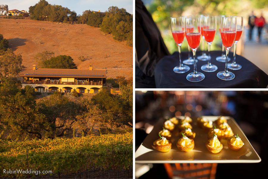 Sonoma Wedding Photographer at Paradise Ridge winery by Rubin Photography_0022
