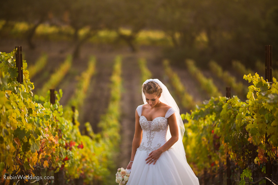 Sonoma Wedding Photographer at Paradise Ridge winery by Rubin Photography_0030