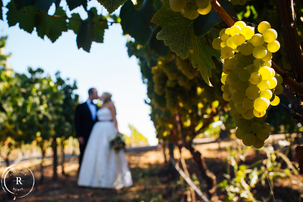 Napa_Wedding_Photographer_Carneros_Private_Vineyard_Browns_Ranch0016