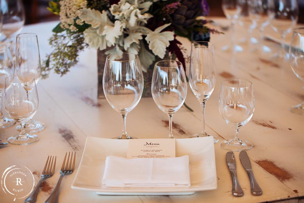 Napa_Wedding_Photographer_Carneros_Private_Vineyard_Browns_Ranch0041