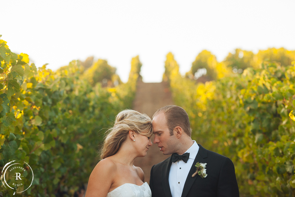 Napa_Wedding_Photographer_Carneros_Private_Vineyard_Browns_Ranch0053