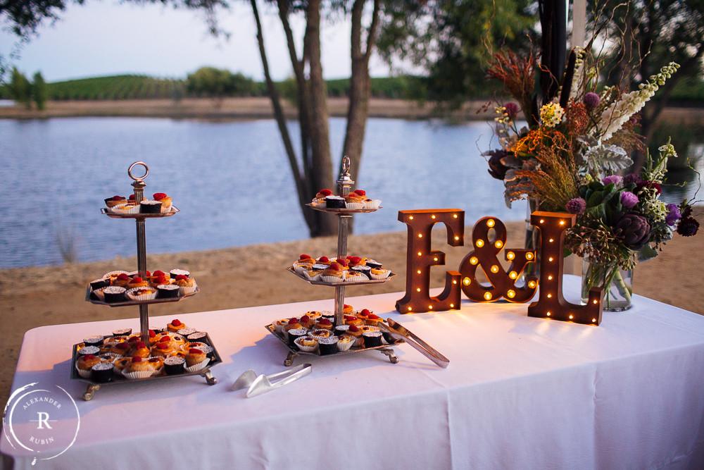 Napa_Wedding_Photographer_Carneros_Private_Vineyard_Browns_Ranch0059