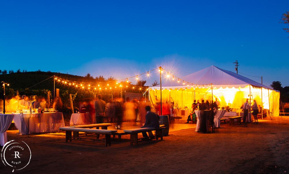 Napa_Wedding_Photographer_Carneros_Private_Vineyard_Browns_Ranch0062