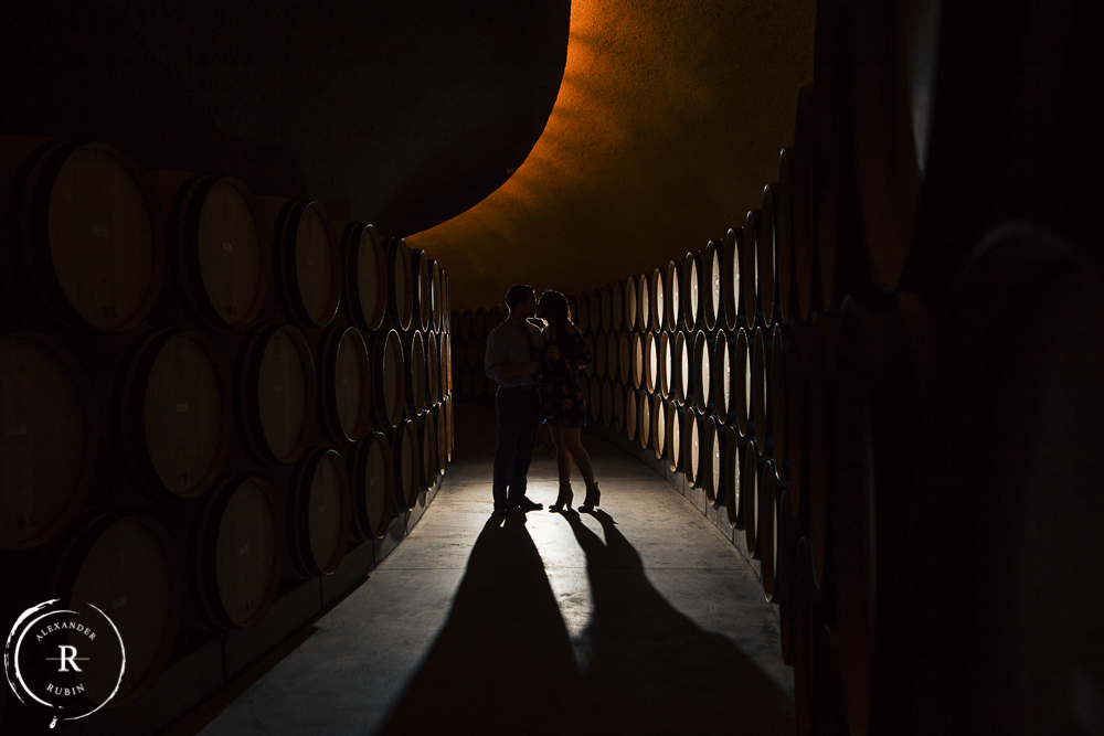 Napa Valley Proposal Photographer Cade Winery_0001