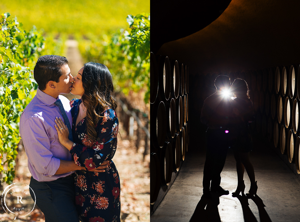 Napa Valley Wedding Proposal Photography Alexander Rubin